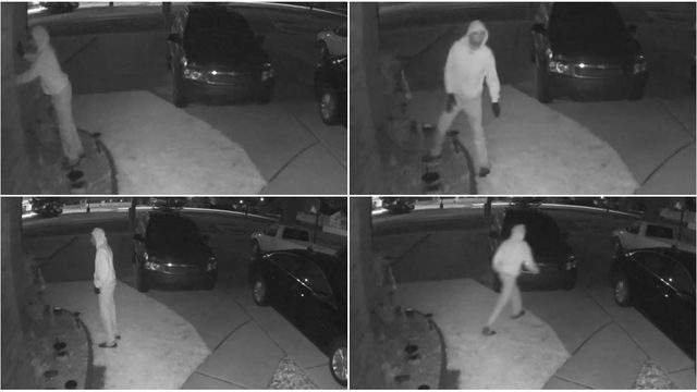 A New Baltimore prowler. (WDIV)