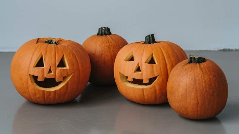 Halloween is right around the corner.