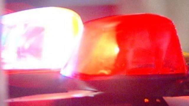 Police lights (WDIV)