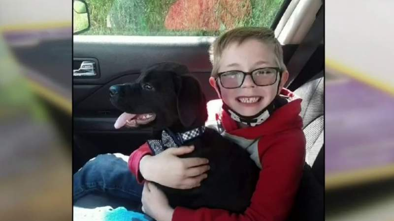 8-year-old boy sells his Pokemon cards to help pay for dog's surgery