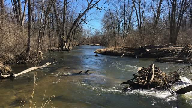 Clinton River, Feb. 19, 2017