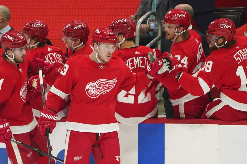 Detroit Red Wings left wing Adam Erne (73) celebrates his goal against the Carolina Hurricanes in the first period of an NHL hockey game Tuesday, March 16, 2021, in Detroit. (AP Photo/Paul Sancya)