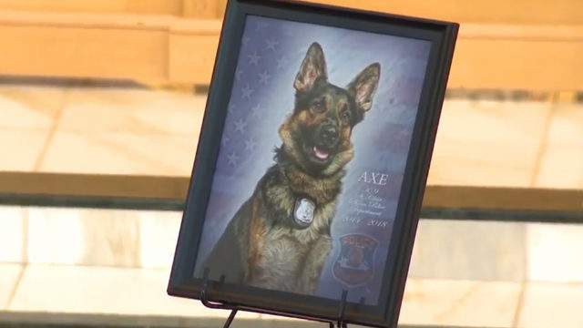 K-9 Officer Axe was killed Nov. 4, 2018 after St. Clair Shores police were called to the Lakeland Manor for reports of a gunman.