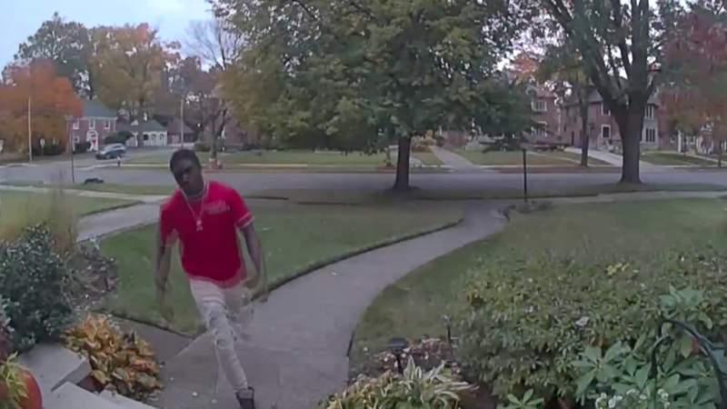Detroit package thief