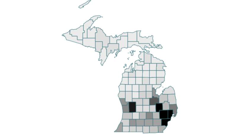 Michigan COVID-19 deaths by county as of Oct. 8, 2021.