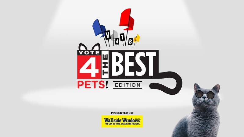 Vote 4 the Best Pets