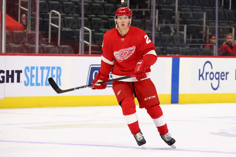 DETROIT, MICHIGAN - APRIL 15: Gustav Lindstrom #28 of the Detroit Red Wings skates against the Chicago Blackhawks at Little Caesars Arena on April 15, 2021 in Detroit, Michigan. (Photo by Gregory Shamus/Getty Images)
