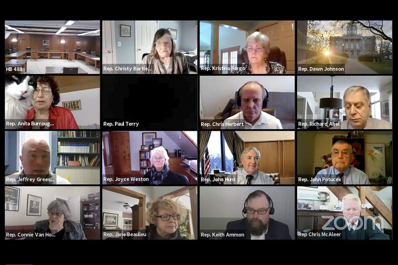 In this Wednesday, Feb. 3, 2020, image, members of New Hampshire's House Commerce and Consumer Affairs Committee participate in a livestream video meeting. After her cat, Yoshi, showed up on screen, at left on second row from the top, Rep. Anita Burroughs, a Democrat from Glen, said she was told lawmakers are no longer allowed to have pets in the room during such meetings. (State of New Hampshire via AP)