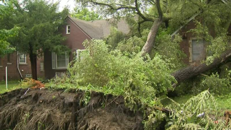 Metro Detroiters clean up after storms bring floods, power outages, fallen trees