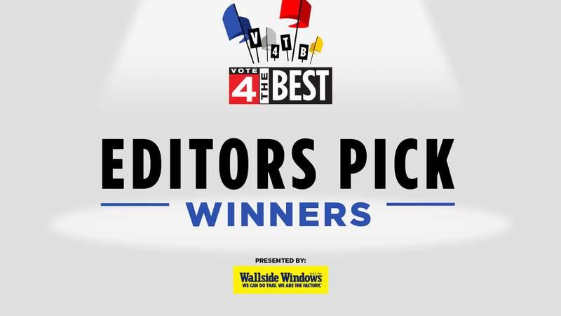 Vote 4 The Best Editors Pick - Winners