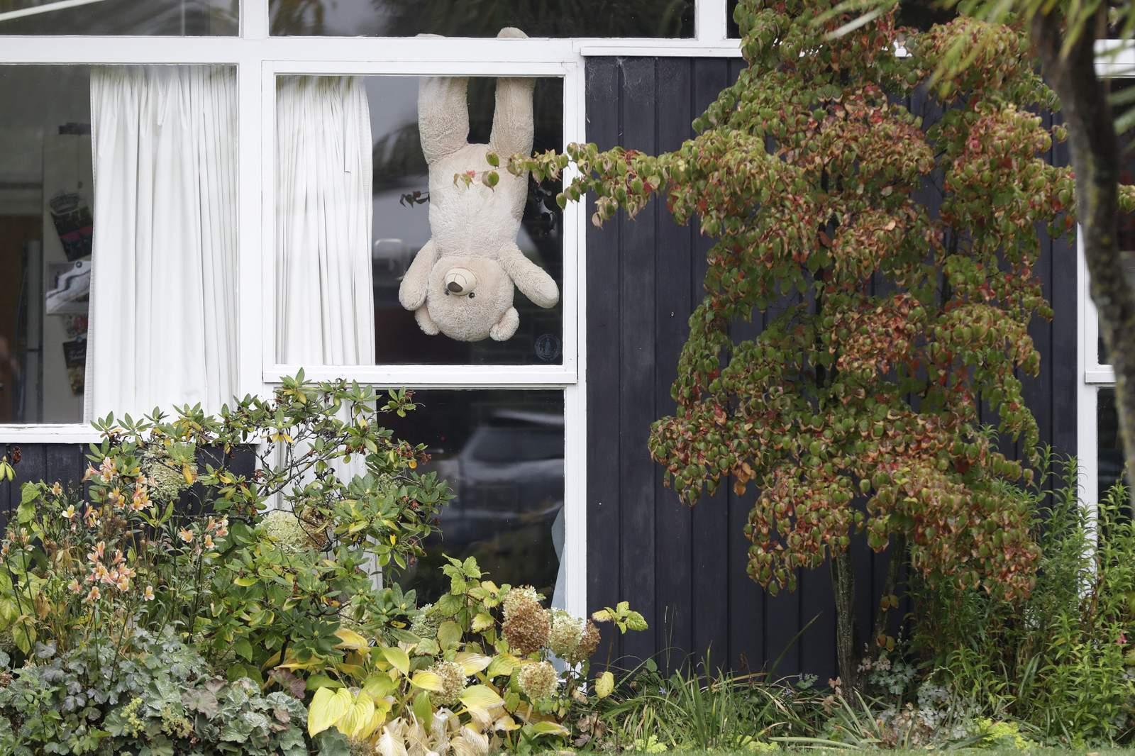 New Zealand embraces teddies to help make lockdown...