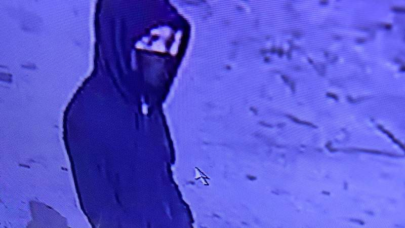 The Federal Bureau of Investigation and Detroit Police Department are asking the public to help identify a carjacking suspect.