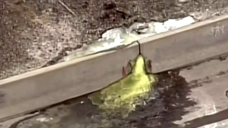 Cleanup plan announced for site of toxic green ooze in Madison Heights