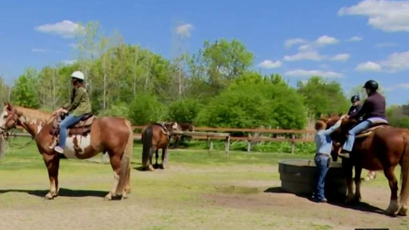 Live in the D: Try It Out Tuesday - Maybury Riding Stables
