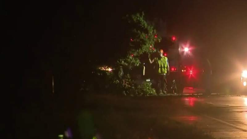 Father killed when large tree falls on minivan in Oakland County, daughter hospitalized