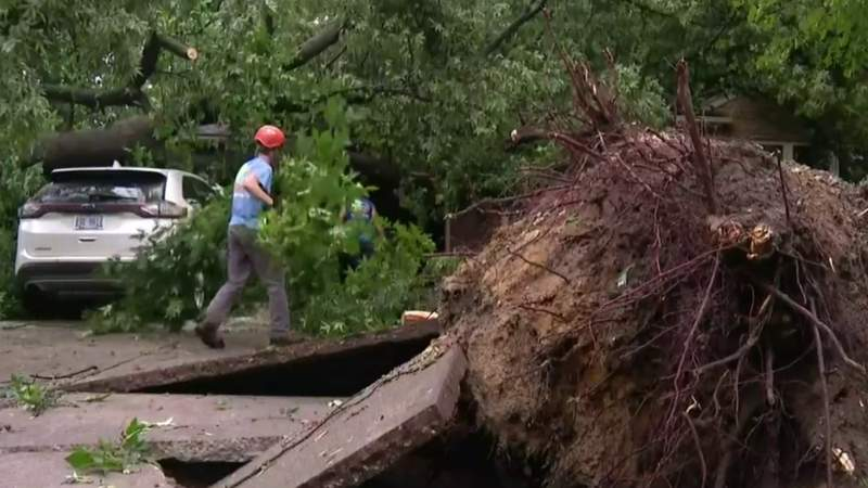 Damage from July 7, 2021, storms in Metro Detroit