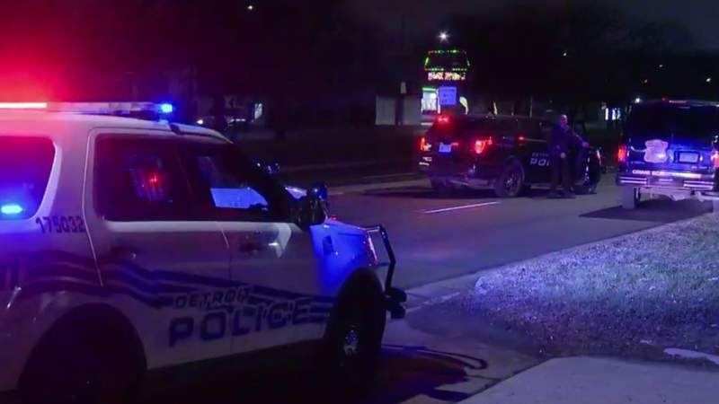 A woman was struck and killed on 8 Mile Road on Dec. 24, 2019.
