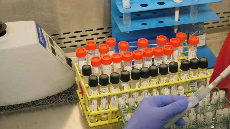 Why the PCR test is most effective