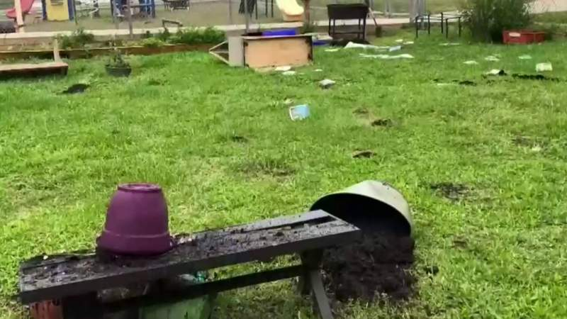 Reading garden trashed by vandals on Detroit's west side