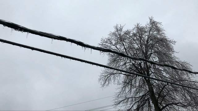 A winter storm hit Metro Detroit on April 15, 2018. (WDIV)