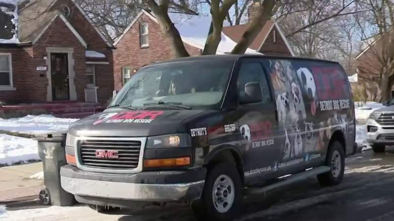 Detroit Dog Rescue rushes to help animals stuck outside in the cold, offers support to owners