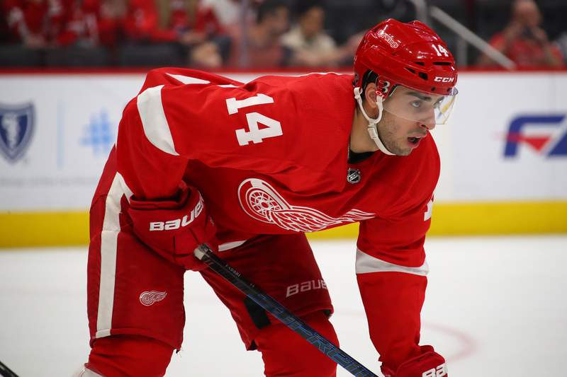 DETROIT, MICHIGAN - JANUARY 10: Robby Fabbri #14 of the Detroit Red Wings skates against the Ottawa Senators at Little Caesars Arena on January 10, 2020 in Detroit, Michigan. (Photo by Gregory Shamus/Getty Images)