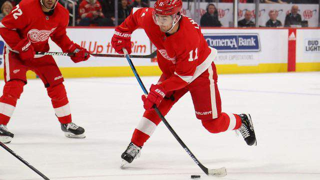 Filip Zadina of the Detroit Red Wings skates against the Montreal Canadiens at Little Caesars Arena on February 26, 2019 in Detroit, Michigan. (Photo by Gregory Shamus/Getty Images)