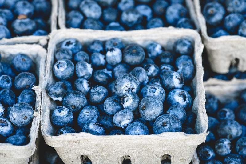 Cartons of blueberries.