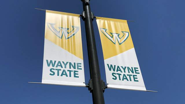 Light pole flags for Wayne State University in Detroit's Midtown. (WDIV)