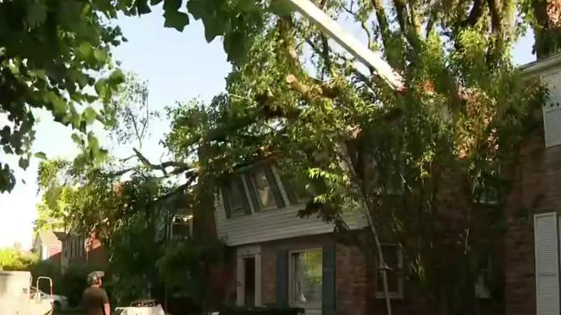 Grosse Pointe Woods residents work to repair damage after severe storms