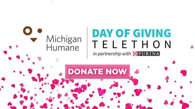 Michigan Humane Day of Giving Telethon