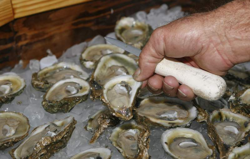 FILE- In this Aug. 13, 2013, file photo, oysters are displayed in Apalachicola, Fla. The Supreme Court tried Monday to inject some mystery into its second consideration of a long-running dispute between Georgia and Florida over water that flows from the Atlanta suburbs to the Gulf of Mexico. Invoking Agatha Christie and Arthur Conan Doyle, the justices puzzled over Florida's claims that blame for the decimation of the state's oyster industry lies with Georgia farmers who use too much water from the Flint river.  (AP Photo/Phil Sears, File)