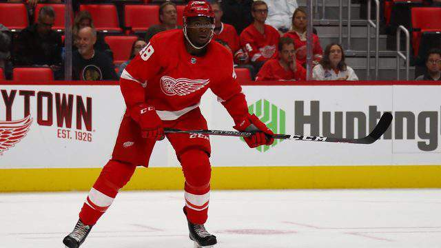 Givani Smith of the Detroit Red Wings skates against the Chicago Blackhawks during a pre season game at Little Caesars Arena on September 20, 2018 in Detroit, Michigan. (Photo by Gregory Shamus/Getty Images)