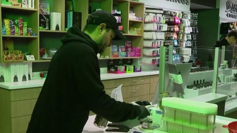GF Default - Marijuana in Michigan: Recreational sales to begin Sunday in Ann Arbor
