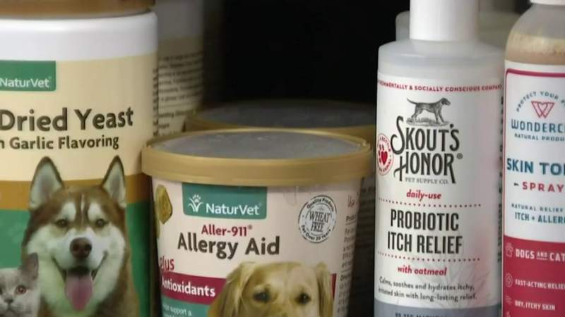 Treating skin infections in dogs