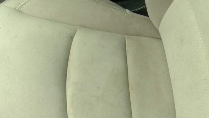 Try it out Tuesday - Car seat cleaning hacks on Live in the D