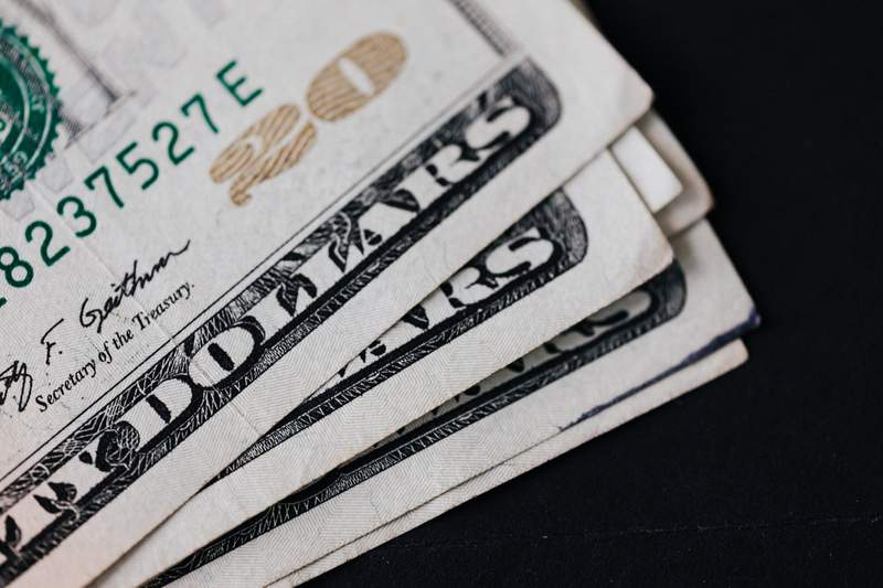 Twenty dollar bills.