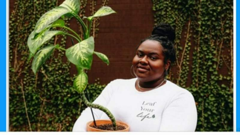 Leaf Me Plant Boutique on Live in the D