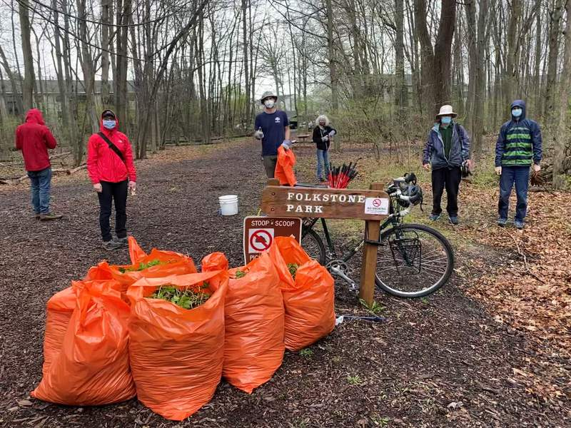Volunteers helped remove invasive species at Folkstone Park earlier this month.