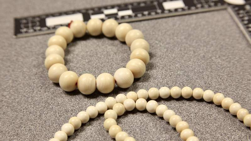 Ivory jewelry seized May 17, 2021, at Detroit Metro Airport.