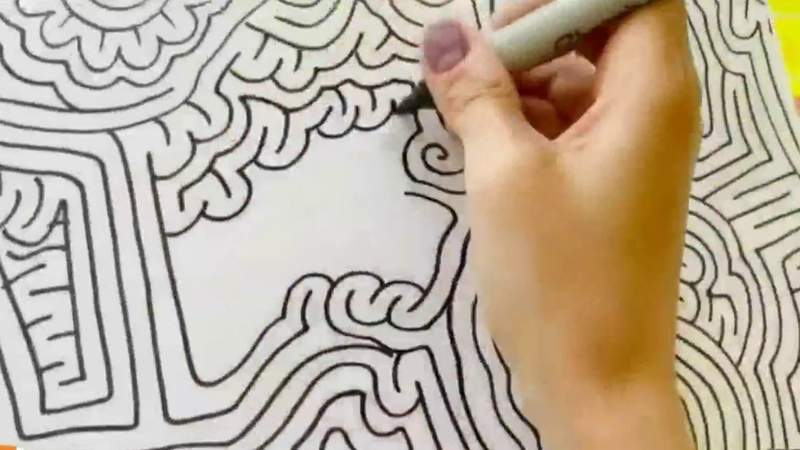 Artist of the world's longest maze on Live in the D