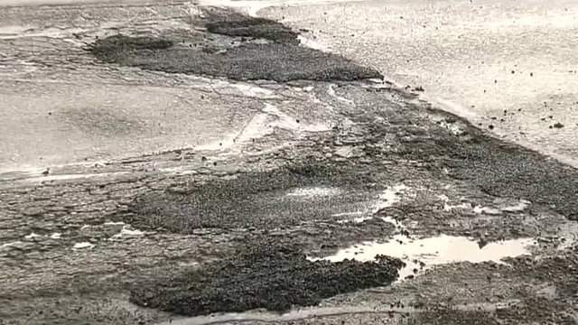 Potholes in Metro Detroit. At least these ones have been filled. (WDIV)