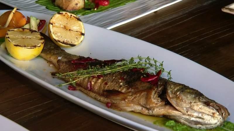 Tasty Tuesday: Modern Greek & Salad Bar