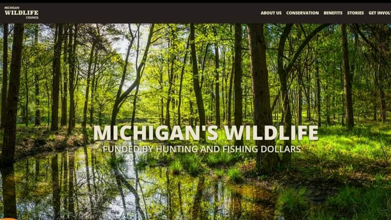 New virtual programs for nature education on Live in the D