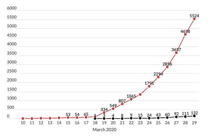 Coronavirus cases as of March 29, 2020.