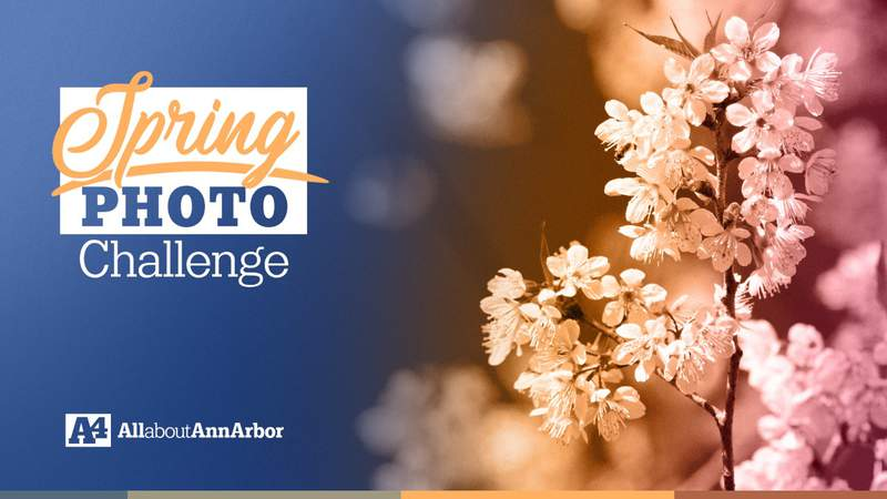 Upload your spring photos by April 29.