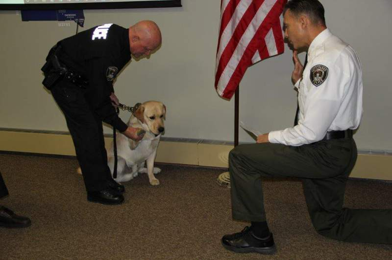 Officer Parks is joining the force as the first Metroparks Police Dog.