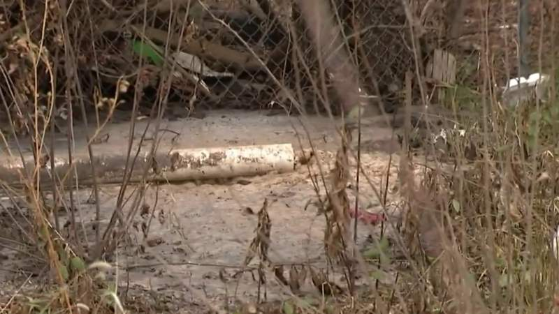 Detroit man claims neighbor is dumping raw sewage in his own backyard