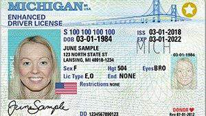 Michigan Enhanced Driver's License (Secretary of State's Office)