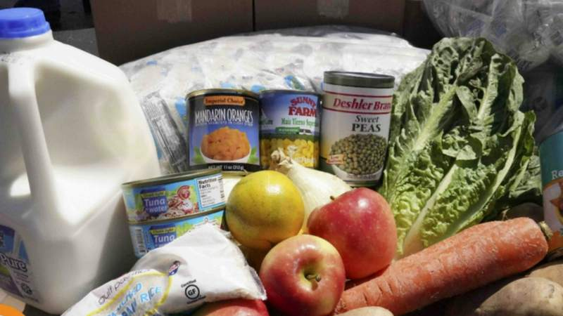 Food from Gleaners Community Food Bank.